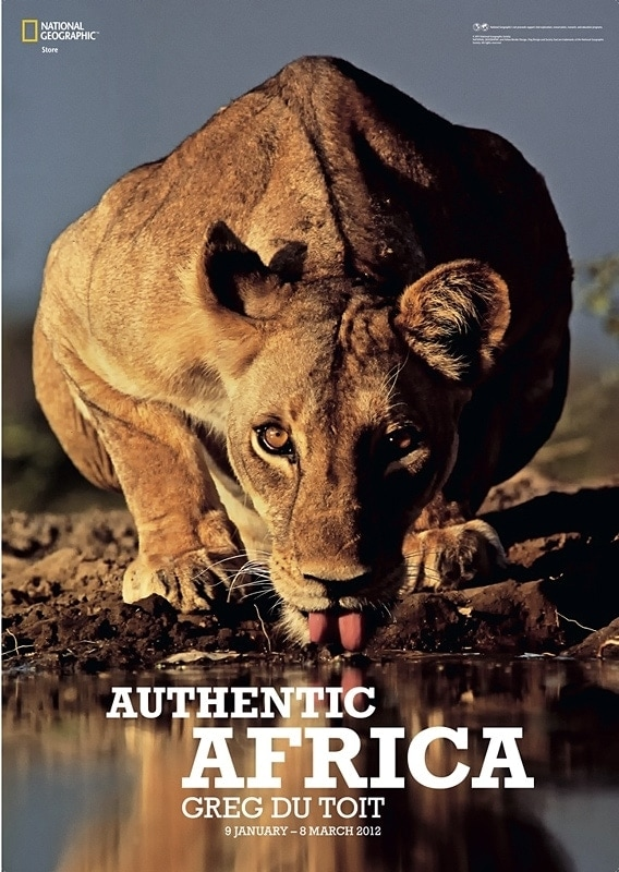 African wildlife photographer - national geographic poster