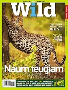 famous african wildlife photographers - cover image by greg du toit
