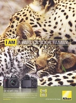 published african wildlife photographers