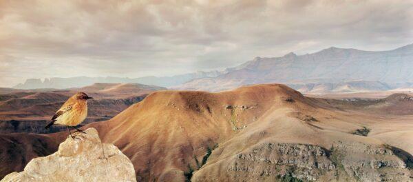 pano photography - Drakensberg Chat